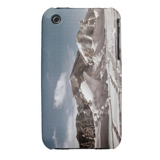 Polar Bear Snow Sculpture iPhone 3 Case-Mate Case