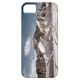 Polar Bear Snow Sculpture iPhone 5 Case