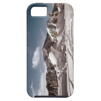 Polar Bear Snow Sculpture iPhone 5 Covers