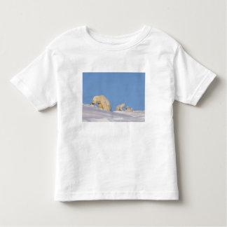 Polar bear sow feeding on grass to get her toddler t-shirt