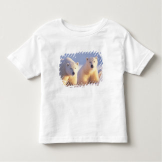 Polar bear sow with cub on pack ice of 1002 toddler t-shirt