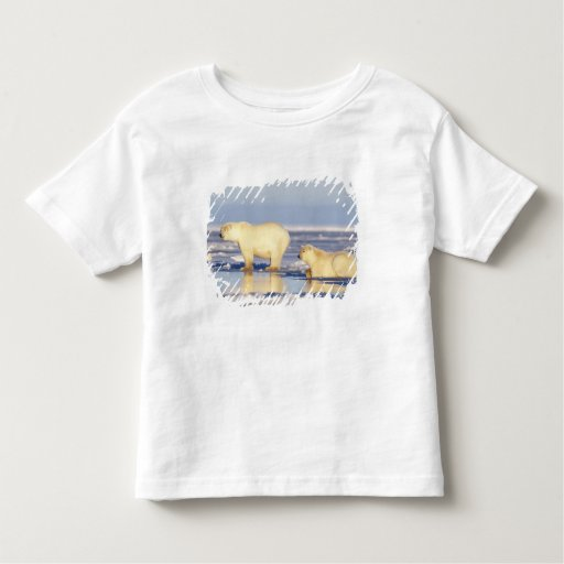Polar bear sow with cub, pack ice, coastal toddler t-shirt