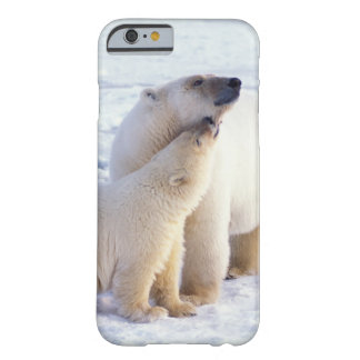 Polar bear sow with cub, pack ice of the barely there iPhone 6 case