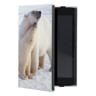 Polar bear sow with cub, pack ice of the cases for iPad mini