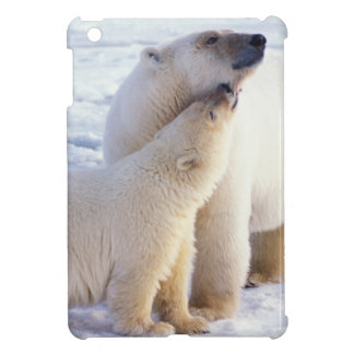 Polar bear sow with cub, pack ice of the iPad mini cases