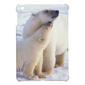 Polar bear sow with cub, pack ice of the iPad mini covers
