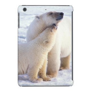 Polar bear sow with cub, pack ice of the iPad mini retina covers