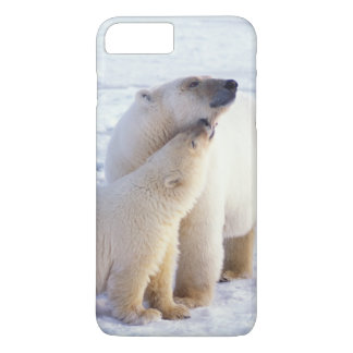 Polar bear sow with cub, pack ice of the iPhone 7 plus case