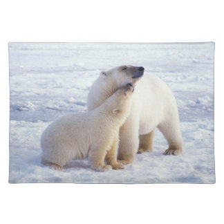 Polar bear sow with cub, pack ice of the placemat