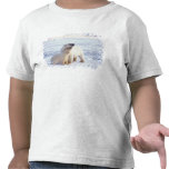 Polar bear sow with cub, pack ice of the tshirt