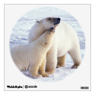 Polar bear sow with cub, pack ice of the wall decal