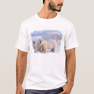 Polar bear sow with cubs on pack ice, coastal T-Shirt
