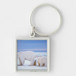 Polar bear sow with cubs on pack ice of keychain