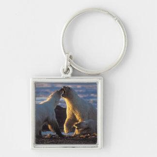 Polar bear sows with cub at side, 1002 coastal keychain