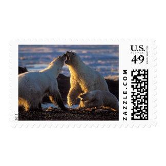 Polar bear sows with cub at side, 1002 coastal postage