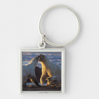 Polar bear sows with cub at side, 1002 coastal Silver-Colored square keychain