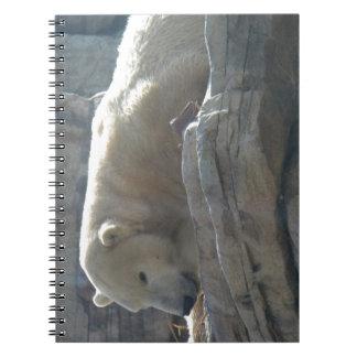 Polar Bear Spiral Note Books