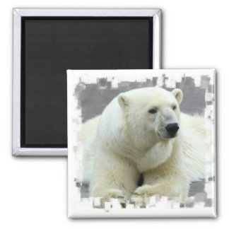 Polar Bear Square Magnet