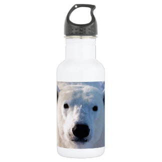Polar Bear Stainless Steel Water Bottle
