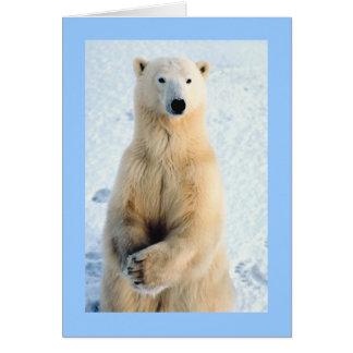 Polar Bear Standing Card