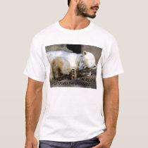 Polar Bear - Stick in the Eye T-Shirt