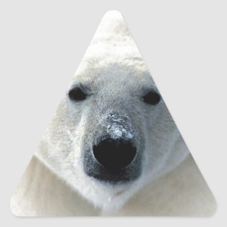 Polar Bear Triangle Stickers