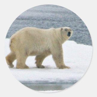 Polar Bear Round Sticker