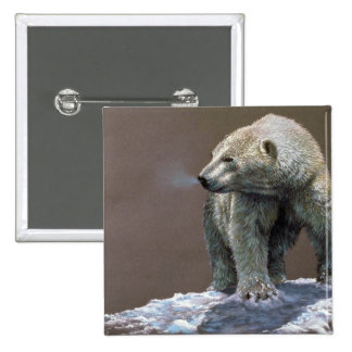 Polar Bear study Pinback Button