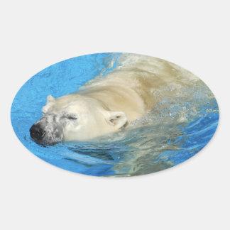 Polar bear swimming oval sticker