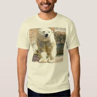 Polar Bear T Shirts