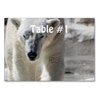 Polar Bear Table Cards