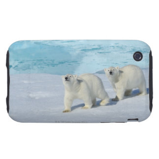 Polar bear, two cups on pack ice, Ursus iPhone 3 Tough Case