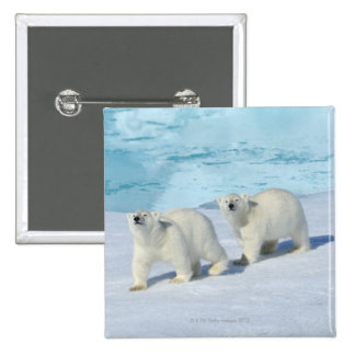 Polar bear, two cups on pack ice, Ursus Pinback Button