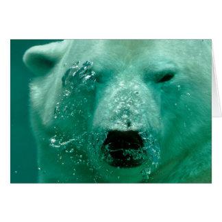 Polar Bear Under Water Card