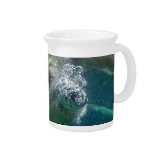 Polar bear underwater drink pitchers