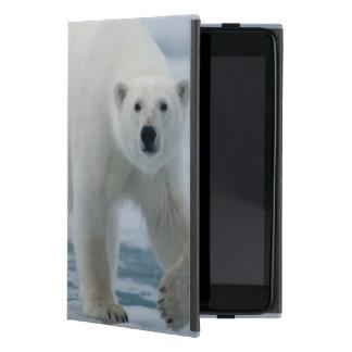 Polar Bear, Ursus Maritimus, Adult Case For iPad Mini