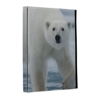 Polar Bear, Ursus Maritimus, Adult iPad Folio Cover