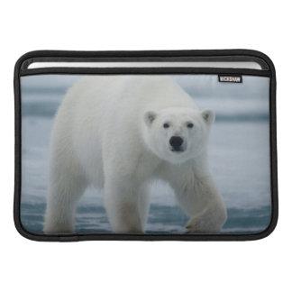 Polar Bear, Ursus Maritimus, Adult MacBook Air Sleeves