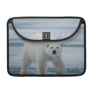 Polar Bear, Ursus Maritimus, Adult Sleeves For MacBook Pro