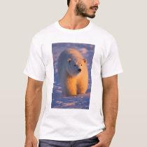 polar bear, Ursus maritimus, cub on the pack T-Shirt