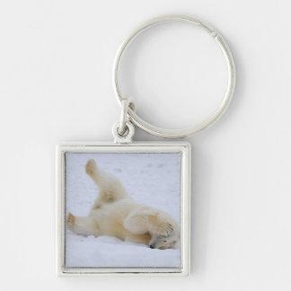 polar bear, Ursus maritimus, cub rolling 2 Silver-Colored Square Keychain