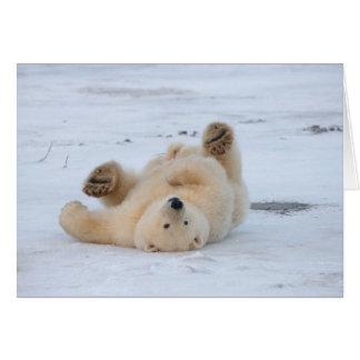 polar bear, Ursus maritimus, cub rolling 3 Card