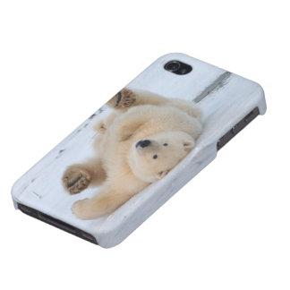 polar bear, Ursus maritimus, cub rolling 3 iPhone 4/4S Covers