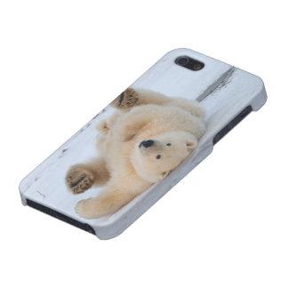 polar bear, Ursus maritimus, cub rolling 3 iPhone SE/5/5s Case