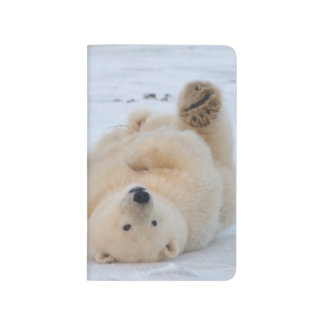 polar bear, Ursus maritimus, cub rolling 3 Journal