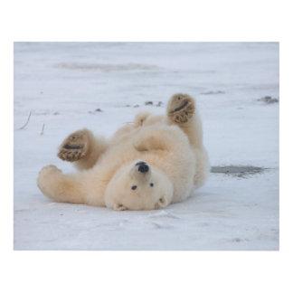 polar bear, Ursus maritimus, cub rolling 3 Wood Wall Art