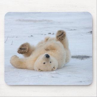polar bear, Ursus maritimus, cub rolling 3 Mouse Pad
