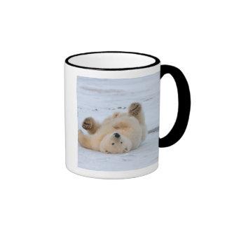 polar bear, Ursus maritimus, cub rolling 3 Ringer Mug