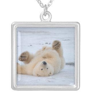 polar bear, Ursus maritimus, cub rolling 3 Silver Plated Necklace