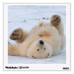 polar bear, Ursus maritimus, cub rolling 3 Room Decals